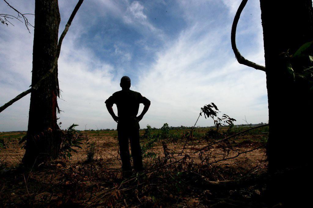 Terra bruciata. Dossier Caritas contro il fenomeno del land grabbing